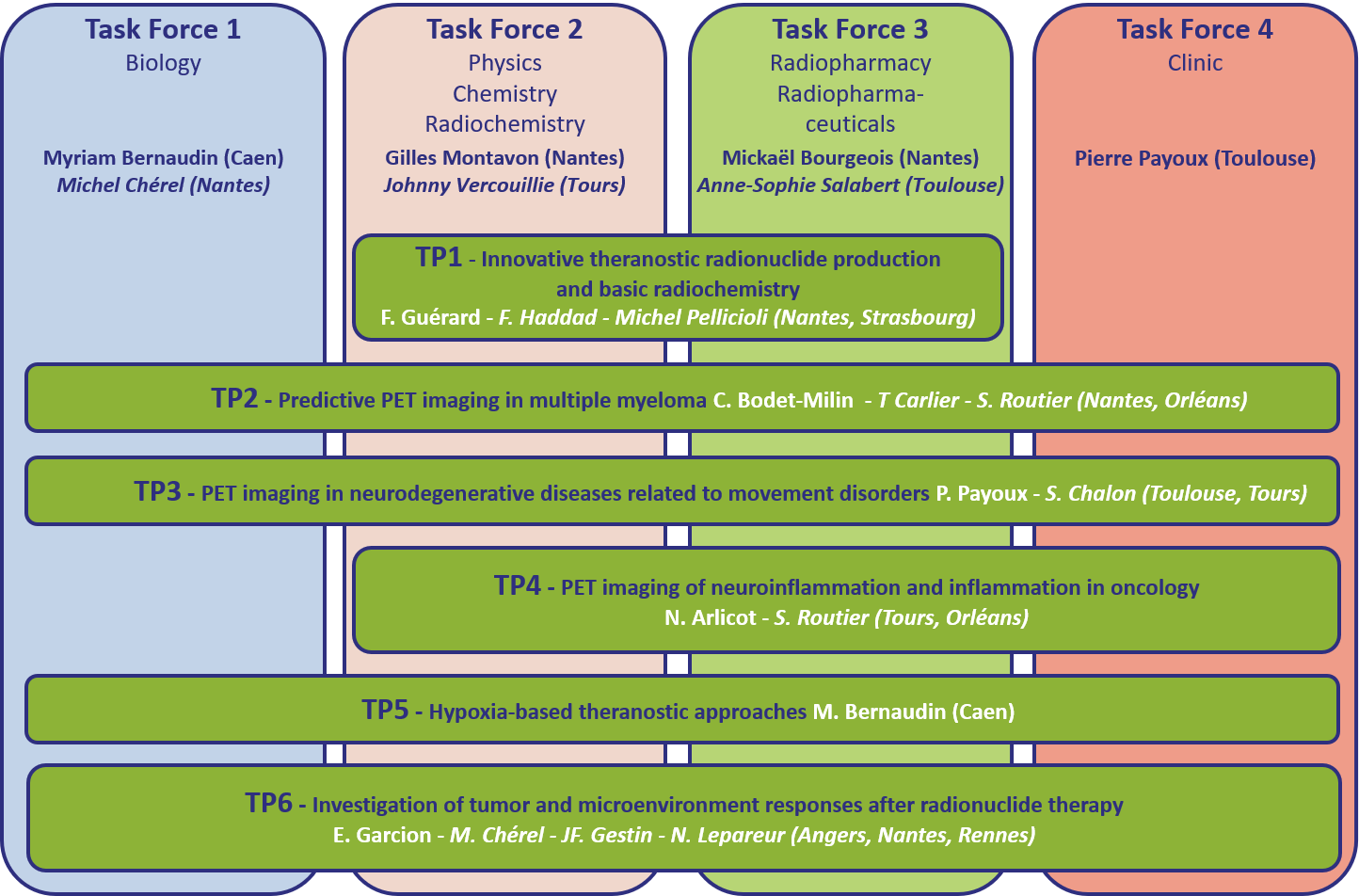 The 6 Translational Projects and the 4 Task Forces of the IRON 2 Labex scientific program